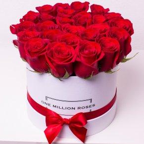 One million roses rosse